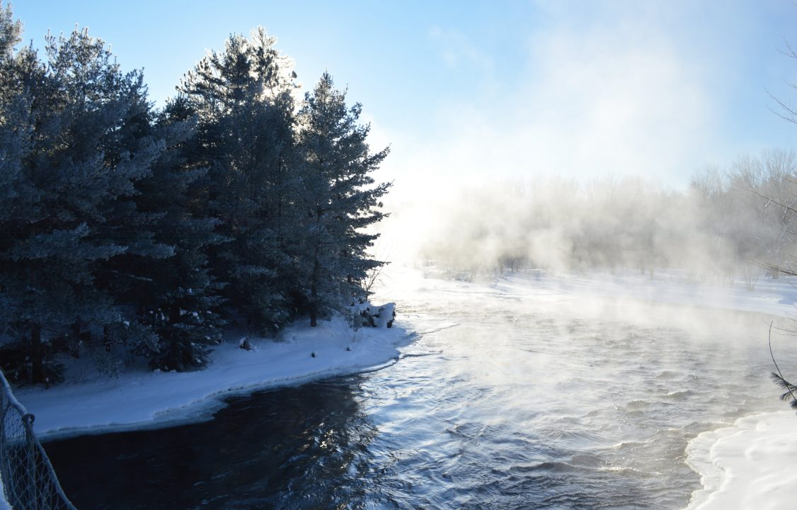 Photograph of a river and forest edge in the winter