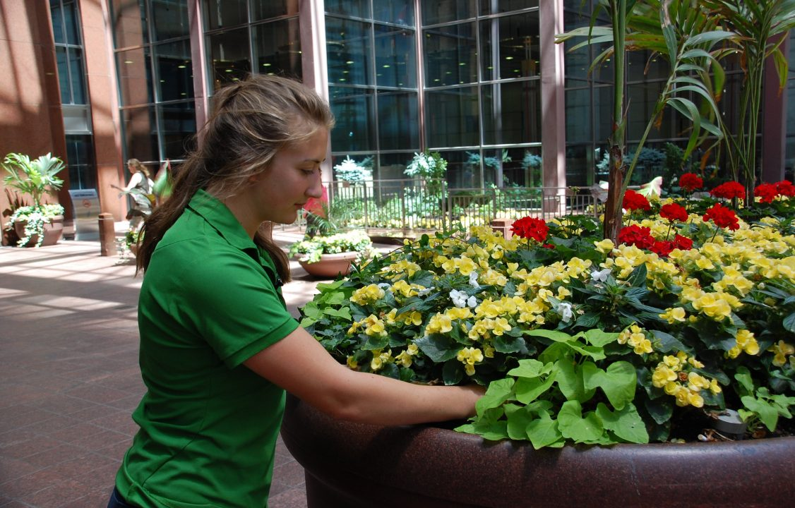 Photograph of a student planting flowers in a pot