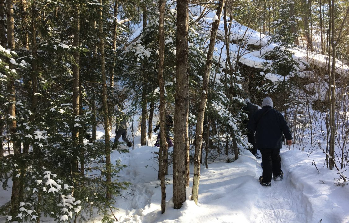 Photograph of students snow shoeing through the woods in winter
