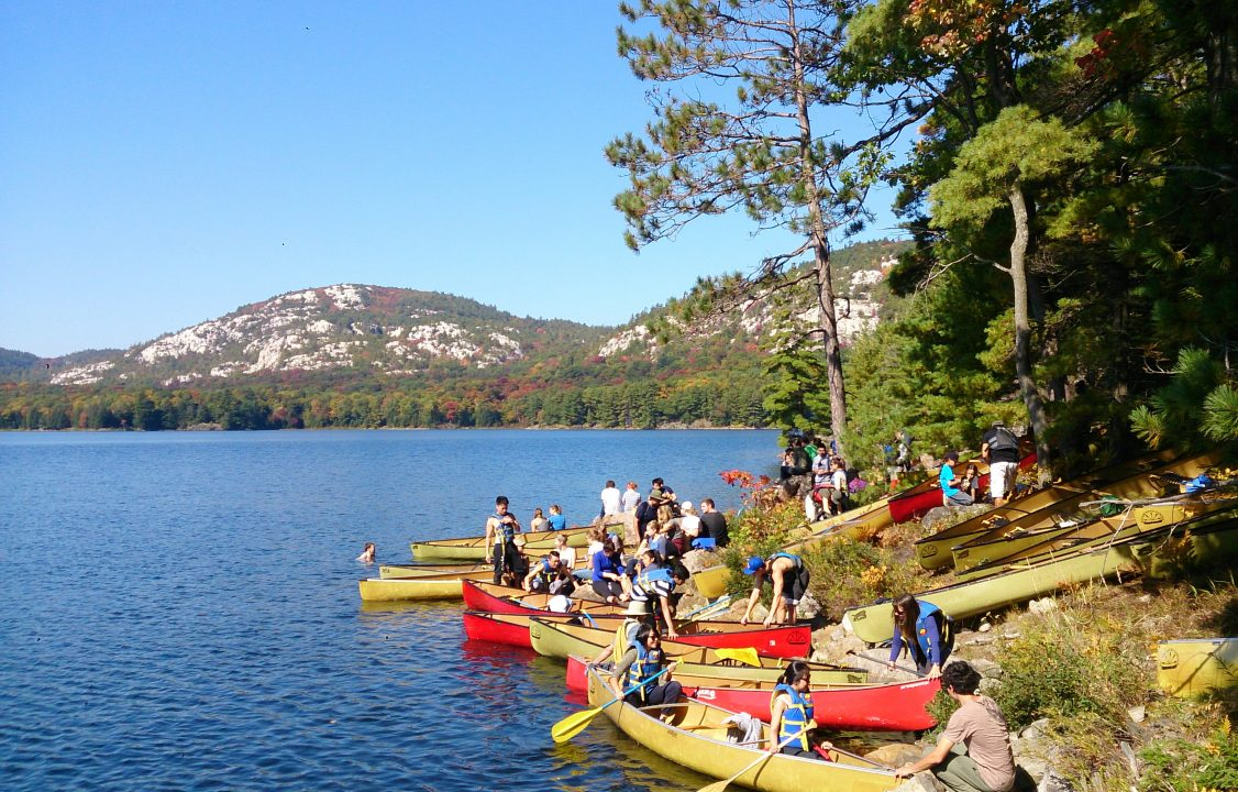 Photograph of students pulling canoes up on a forest bank